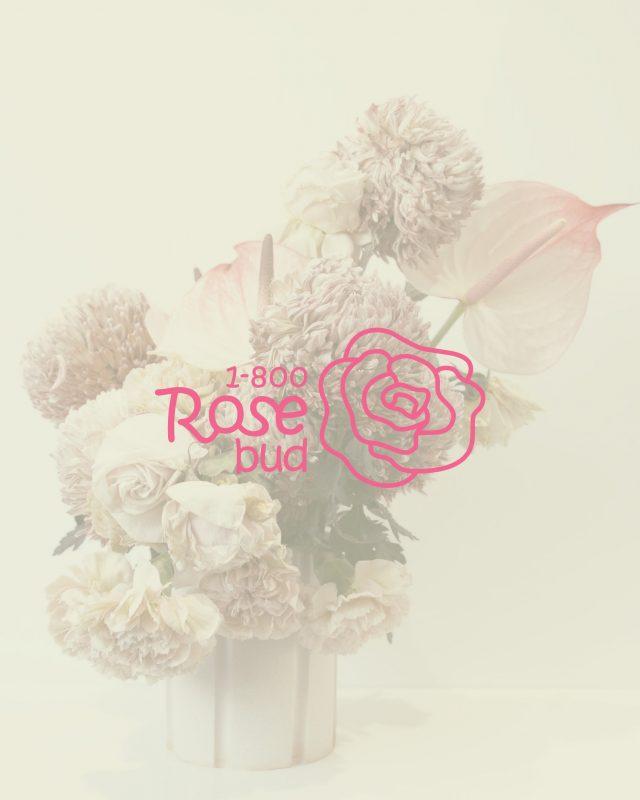 1-800 Rose bud